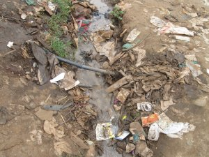"""the waste has led to poor sanitation"""